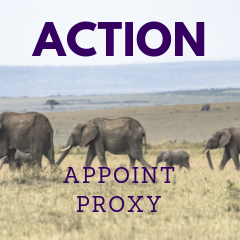 Appoint proxy Website Convention 2018